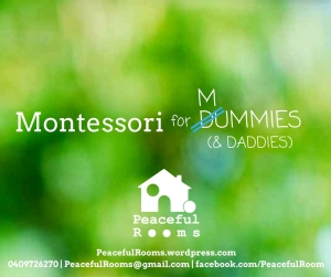 montessori-for-dummies